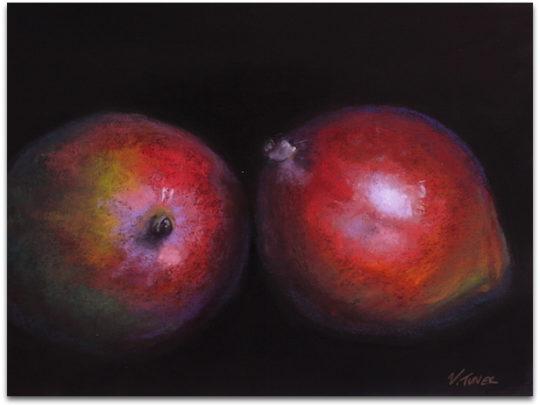 Pastel painting of mangos on black paper by artist Vanessa Turner