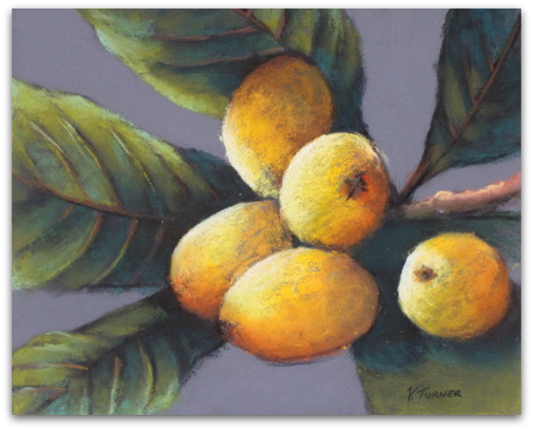 Bermudian artwork pastel painting of loquats by artist Vanessa Turner