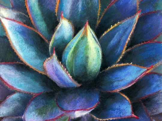 Agave Pastel Painting